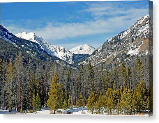 Bowen Mountain In Winter Canvas Print