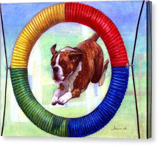 Boxer Dog Agility Class Canvas Print by Olde Time  Mercantile