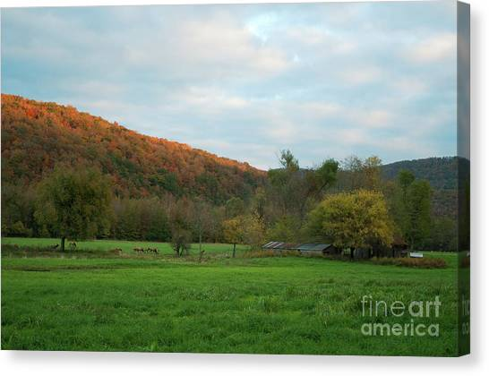 Boxley Valley Arkansas Canvas Print