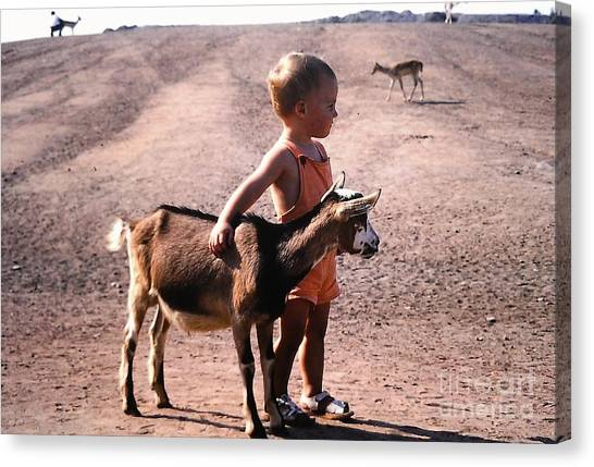 Boy And A Goat Canvas Print