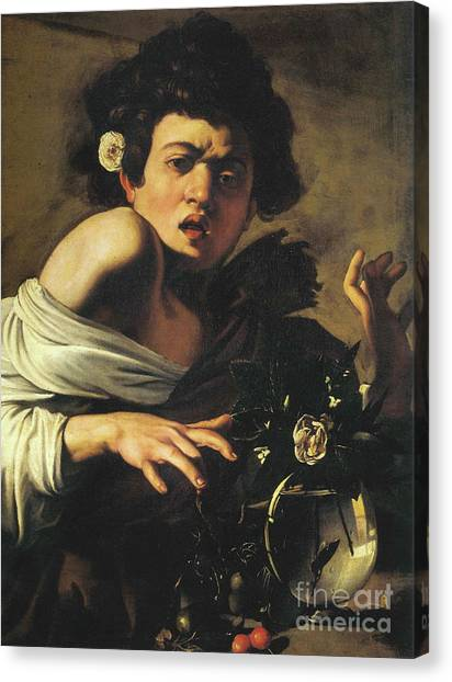 Lizards Canvas Print - Boy Bitten By A Lizard, 1596 To 97 by Caravaggio