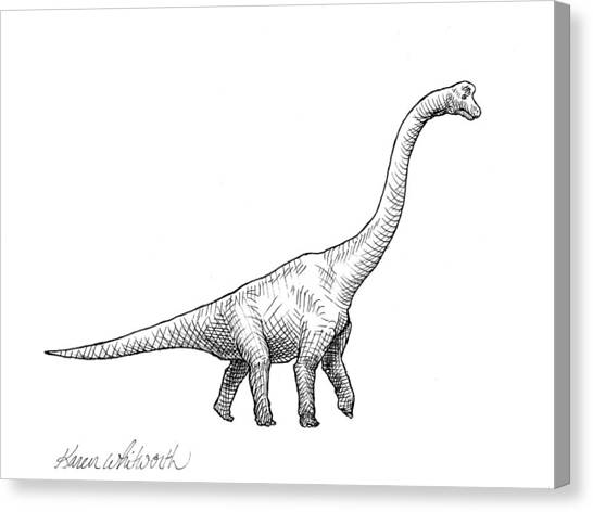 Dinosaurs Canvas Print - Brachiosaurus Dinosaur Black And White Dino Drawing  by Karen Whitworth