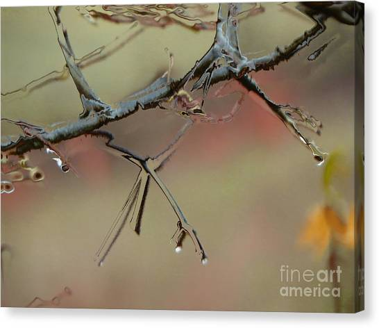 Branch With Water Abstract Canvas Print