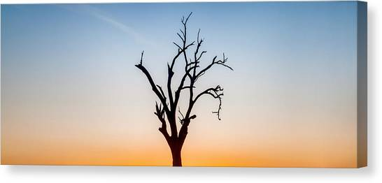 Tree Of Life Canvas Print - Branches by Az Jackson