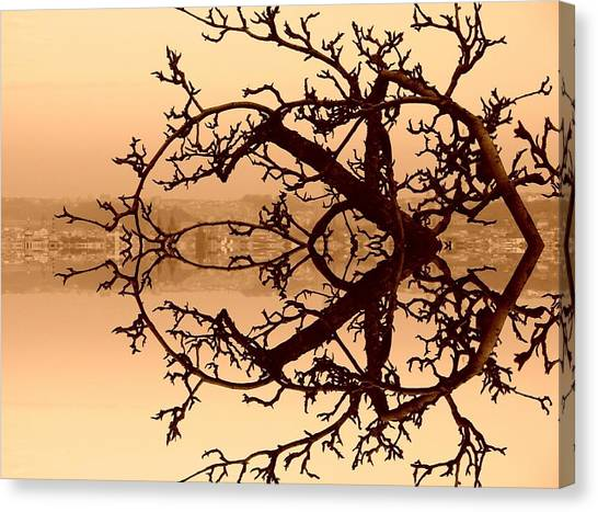 Branches In Suspension Canvas Print