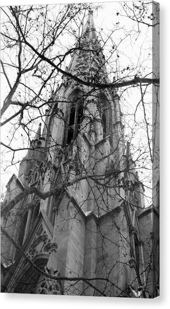 Branches Of Faith Canvas Print by Ashley Porter