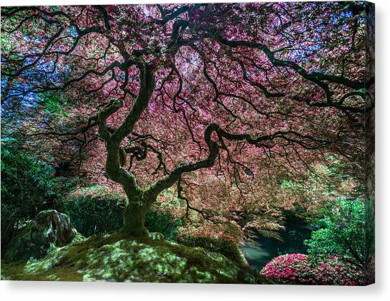 Branches Of Love Canvas Print