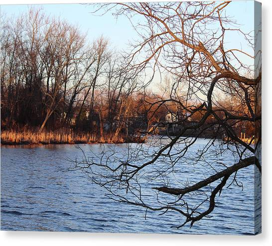 Branches Over Water Canvas Print
