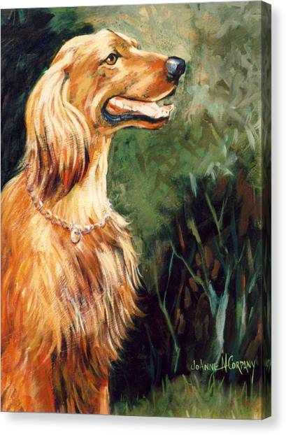 Brandy   Irish Setter Canvas Print by JoAnne Corpany
