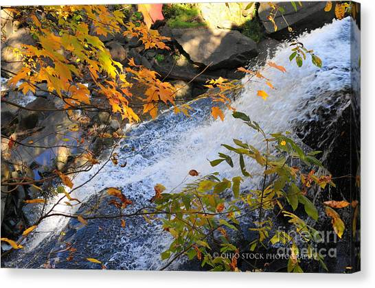 D30a-18 Brandywine Falls Photo Canvas Print