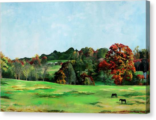 Beaver Valley Canvas Print
