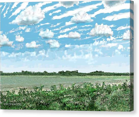 Brazoria County Field Canvas Print