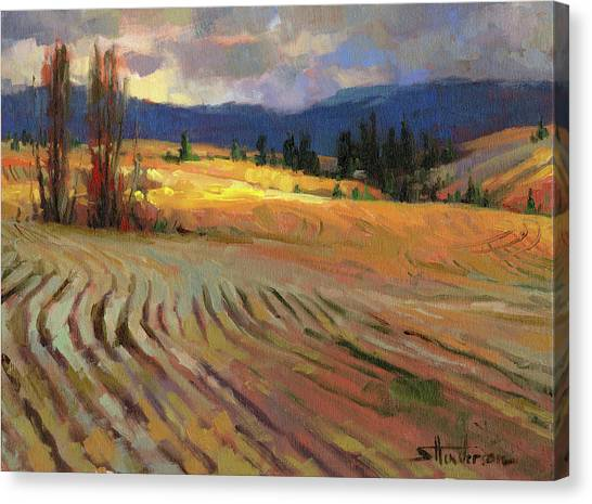 Pine Trees Canvas Print - Break In The Weather by Steve Henderson