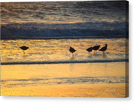 Canvas Print featuring the photograph Breakfast With Friends by Barbara Ann Bell