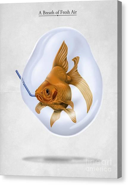 Goldfish Canvas Print - Breath Of Fresh Air by Rob Snow