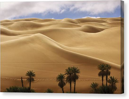 Breathtaking Sand Dunes Canvas Print