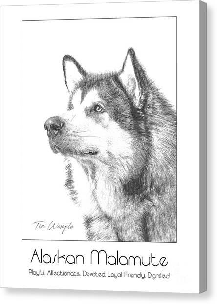 Breed Poster Alaskan Malamute Canvas Print by Tim Wemple