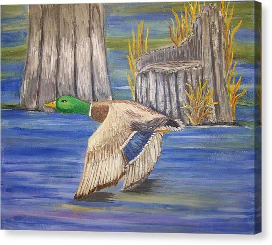 Breezing Across The Wetlands Canvas Print