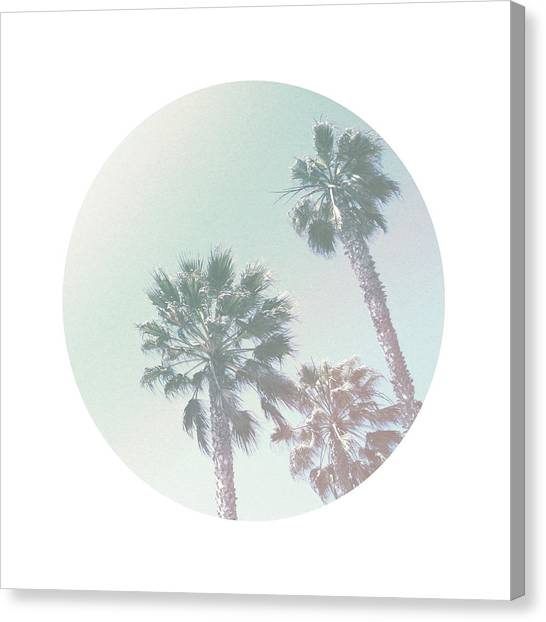 Santa Monica Canvas Print - Breezy Palm Trees- Art By Linda Woods by Linda Woods