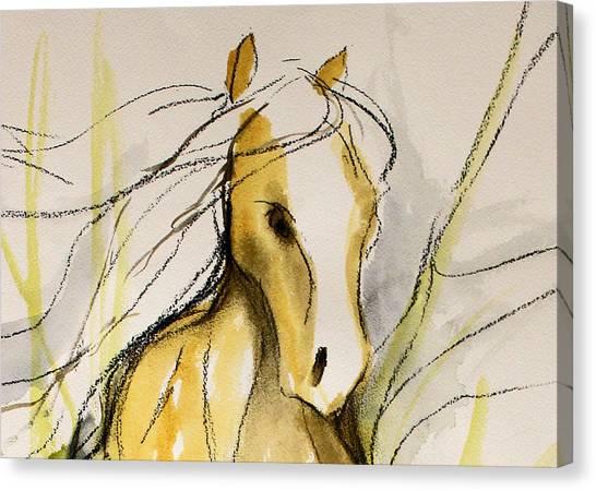 Sporthorse Canvas Print - Bridal Veil by Jennifer Fosgate