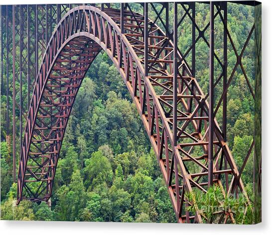 Canvas Print featuring the photograph Bridge Of Trees by Rick Locke