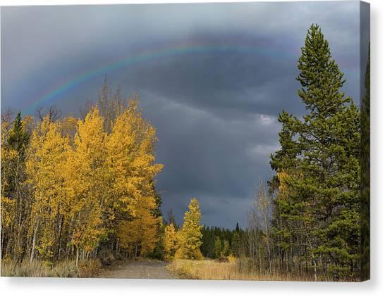 Teton National Forest Canvas Print - Bridger Teton Rainbow by Kathleen Bishop
