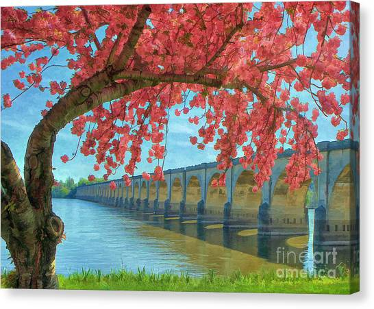 Beautiful Blossoms Canvas Print