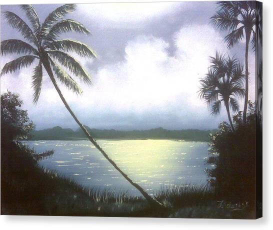 Bright Night Canvas Print by Francis Roberts ll