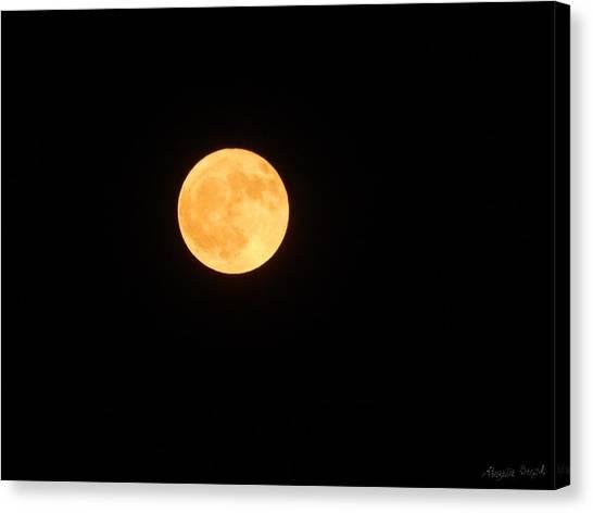 Bright Orange Moon Canvas Print