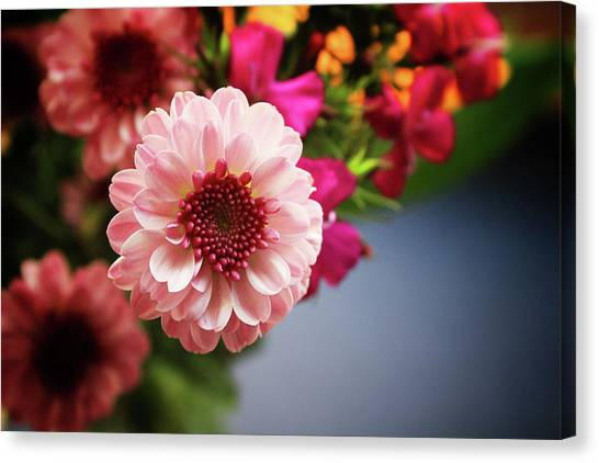 Dahlia Canvas Print - Bright Pink Floral 2- Art By Linda Woods by Linda Woods