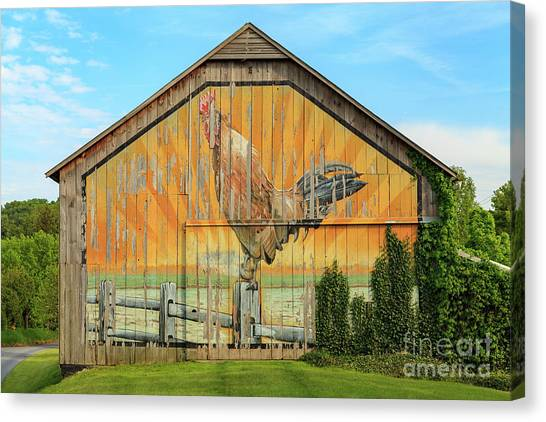 Bright Rooster Barn Canvas Print