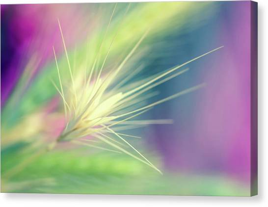 Canvas Print - Bright Weed by Terry Davis