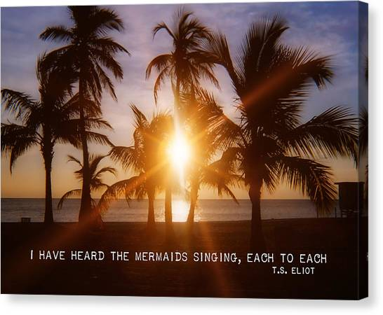 Brilliance Quote Canvas Print by JAMART Photography