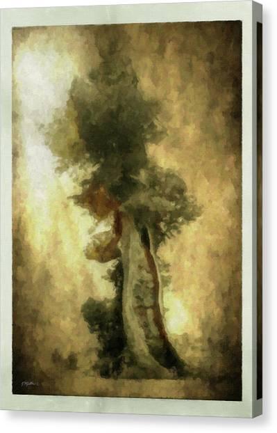 Bristlecone Pine Canvas Print