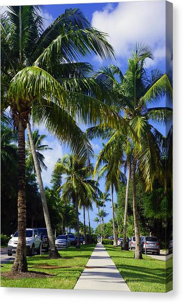 Broad Avenue South, Old Naples Canvas Print