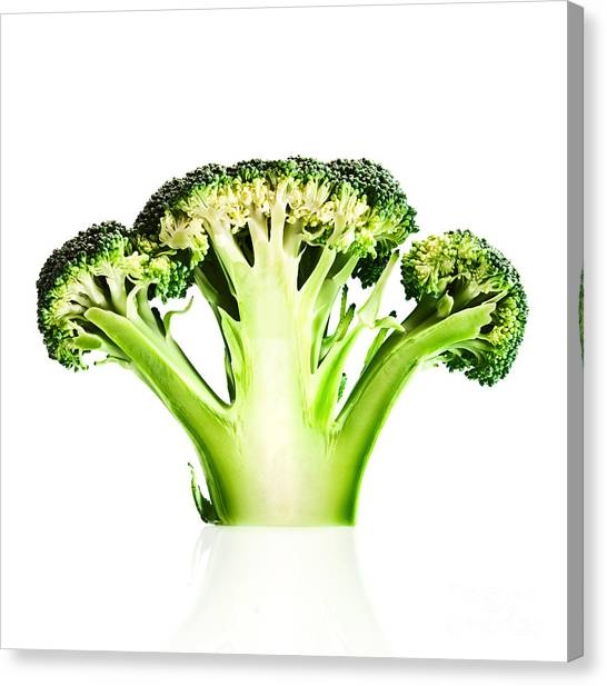 Broccoli Canvas Print - Broccoli Cutaway On White by Johan Swanepoel