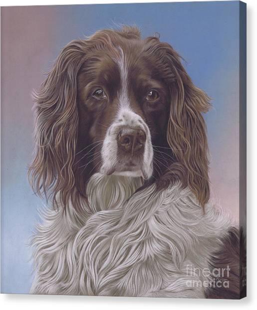Brodie Canvas Print
