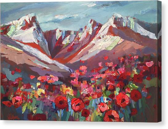Broken Top Wildflowers Canvas Print