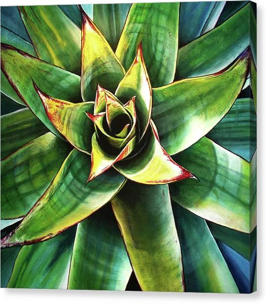 Bromeliad I Canvas Print by Maribel Garzon