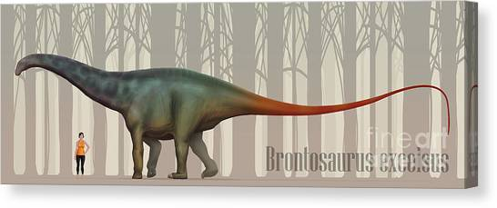 Brontosaurus Canvas Print - Brontosaurus Excelsus Size Compatison by Christian Masnaghetti