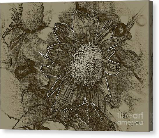 Bronzed Out Sunflower Canvas Print
