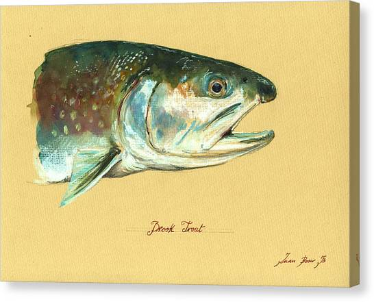 Fly Fishing Canvas Print - Brook Trout Watercolor by Juan  Bosco