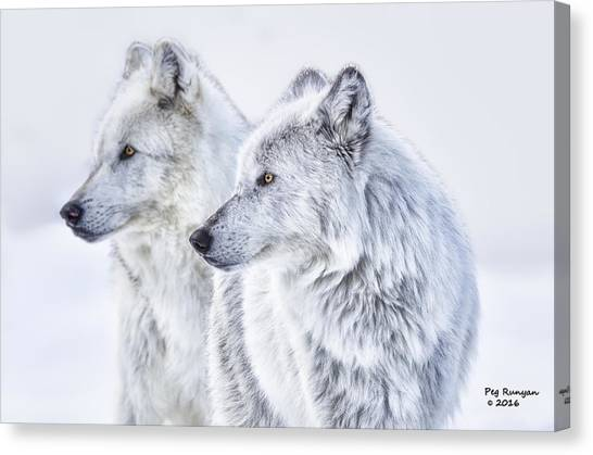 Canvas Print - Brothers by Peg Runyan
