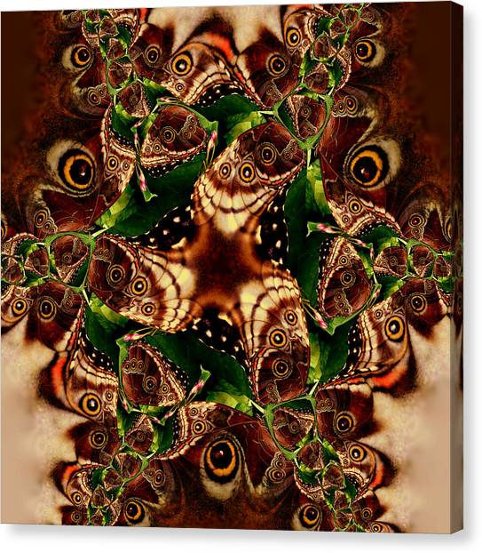 Brown Butterfly Collage Canvas Print