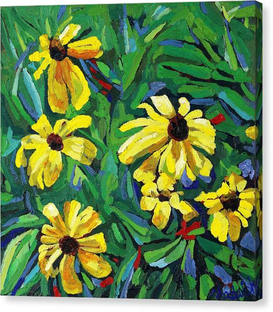 Brown-eyed Susans Canvas Print