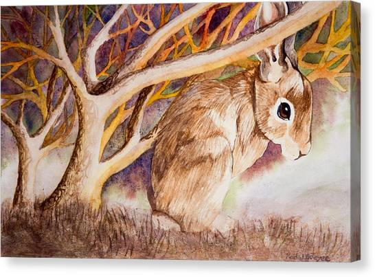 Brown Rabbit Canvas Print