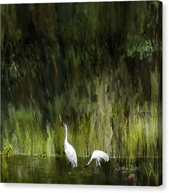 Browsing Canvas Print