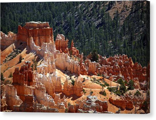 Mountain West Canvas Print - Bryce Canyon  by Jane Rix