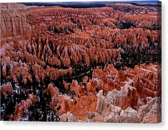 Bryce Canyon N. P. Canvas Print by Larry Gohl