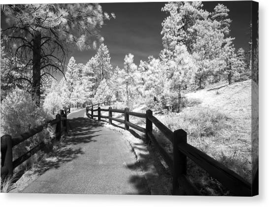 Bryce Canyon Trail Canvas Print by Mike Irwin